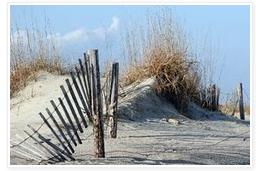 """Fence in Dunes"""